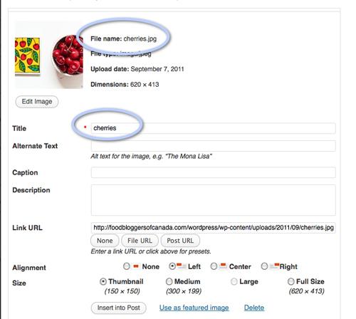 wordpress screen shot for photo uploads
