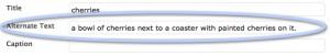 wordpress screenshot showing the Alternate Text Field