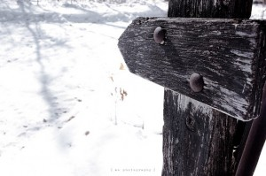 Fence Marker in the Snow