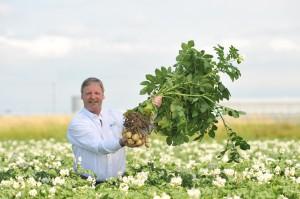 BCfresh potato grower