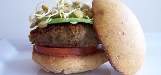 Lentil burger for FBC
