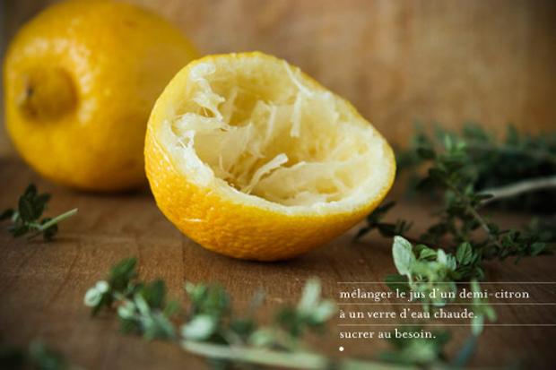 thym-citron_1