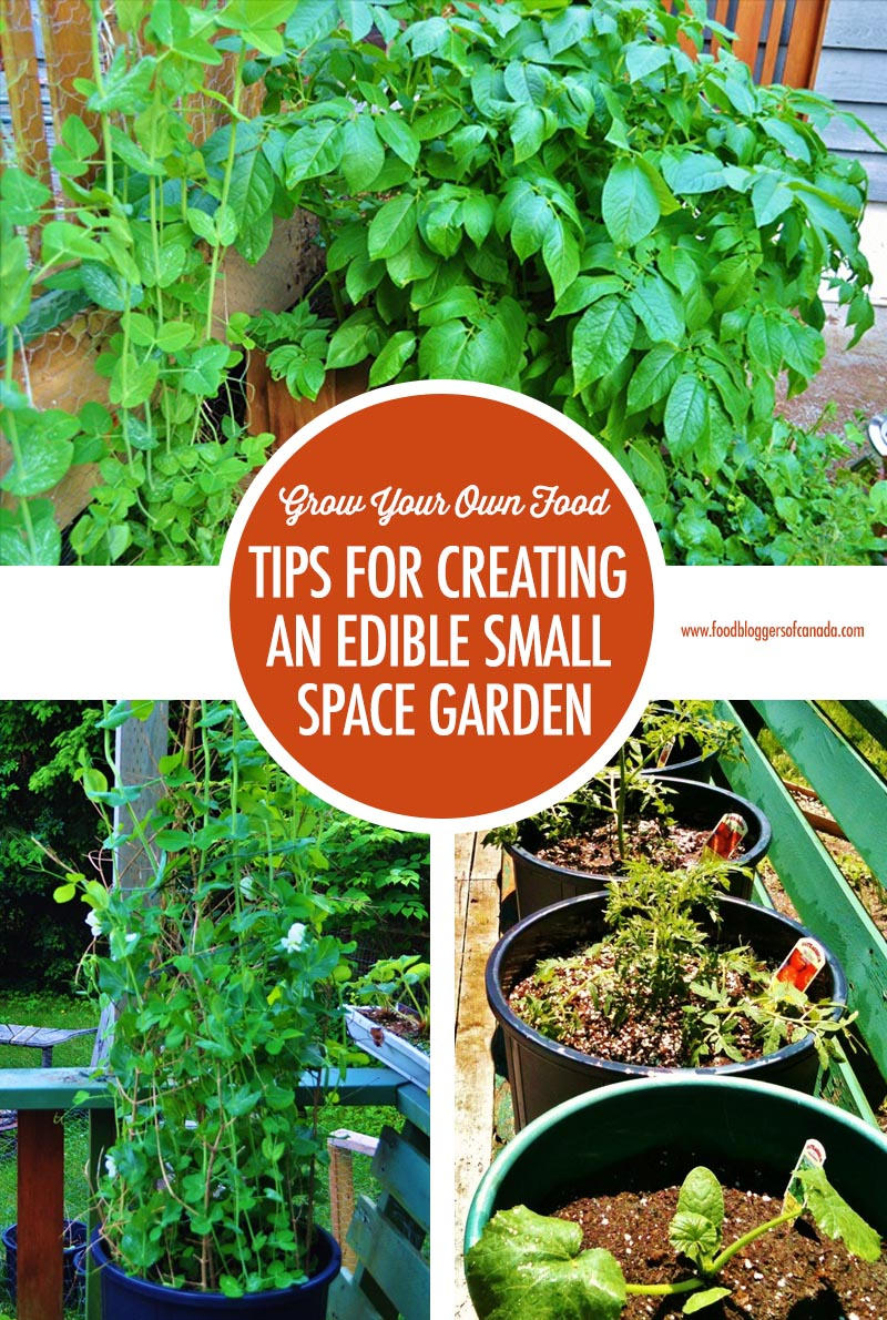 Tips For Creating An Edible Small Space Garden | Food Bloggers of Canada