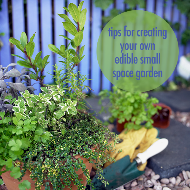 Tips For Creating Your Own Edible Small Space Garden | FBC