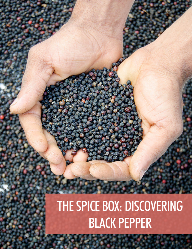 The Spice Box - Exploring Black Pepper | Food Bloggers of Canada