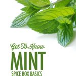 Get to Know MInt - Spice Box Basics | Food Bloggers of Canada