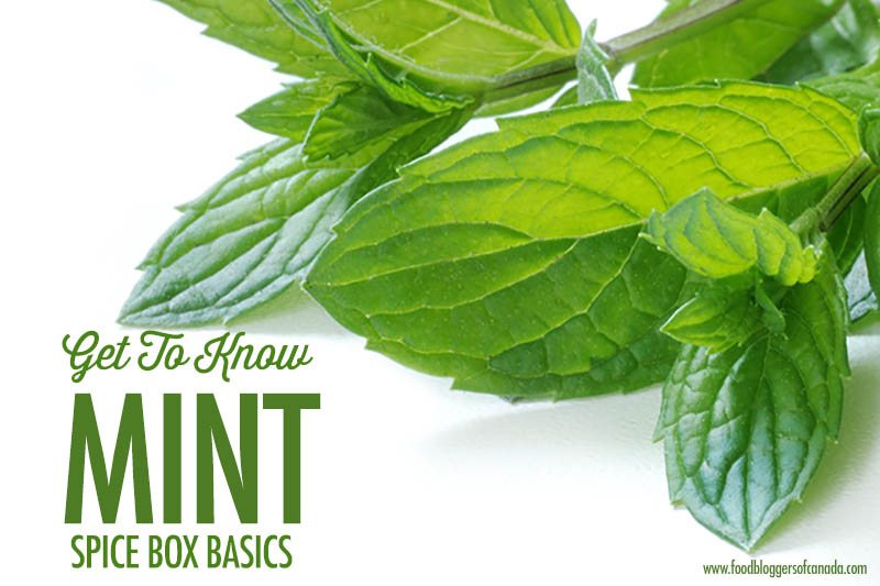 The Spice Box: Getting to Know Fresh & Dried Mint | Food Bloggers of