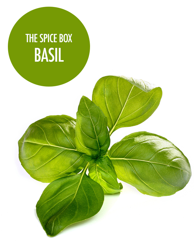 The FBC Spice Box - Getting to Know Basil | Food Bloggers of Canada