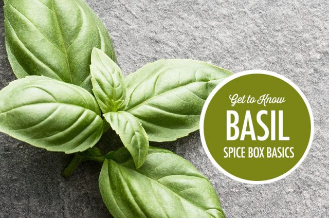 Get to Know Basil