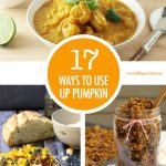 17 Ways To Use Pumpkin | Food Bloggers of Canada
