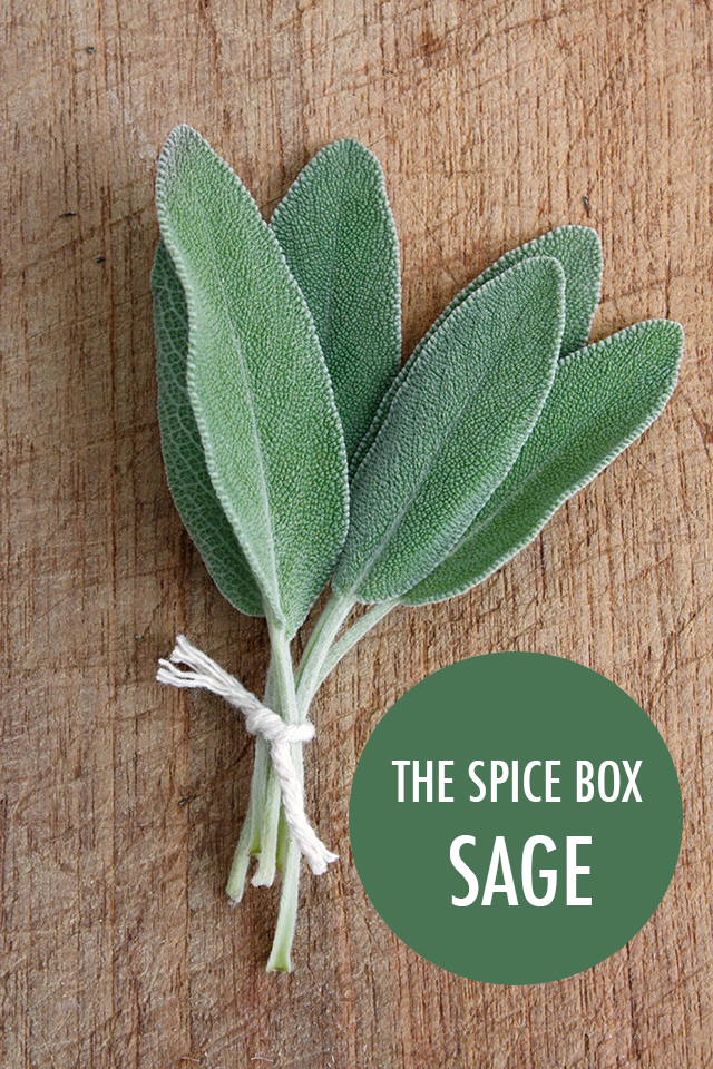 The Spice Box: Getting to Know Sage | Food Bloggers of Canada