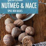 Spice Box Basics: Nutmeg and Mace | Food Bloggers of Canada