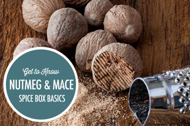 Spice Box Basics: Nutmeg and Mace | Food Bloggers of Canada