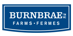 Burnbrae1