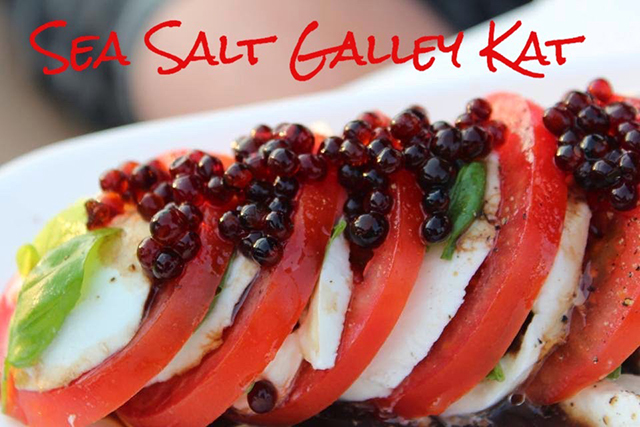 FBC Featured Member: Sea Salt Galley Kat