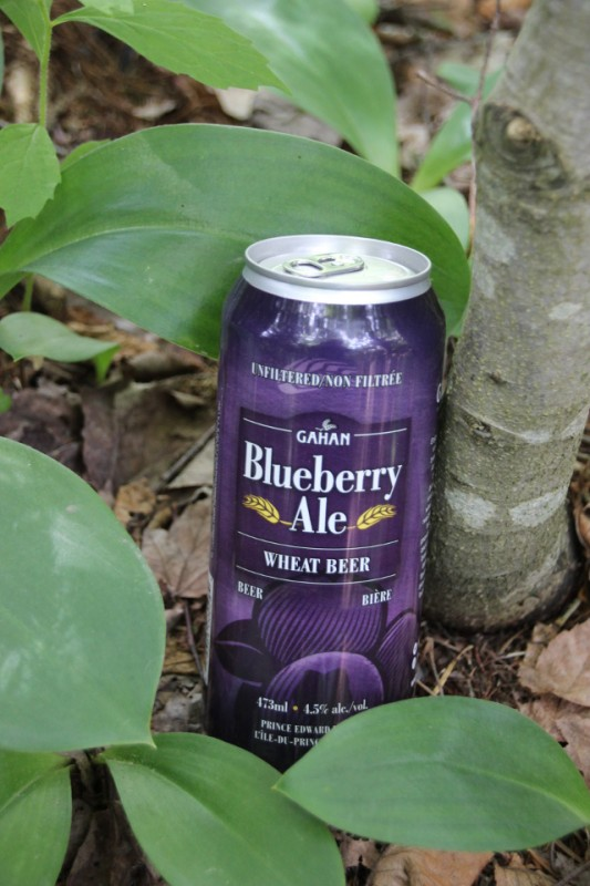 Canada's Craft Beer Atlantic Edition: Beer, Blueberries and Maple Syrup