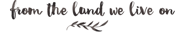 FBC Featured Member: From The Land We Live On | Food Bloggers of Canada