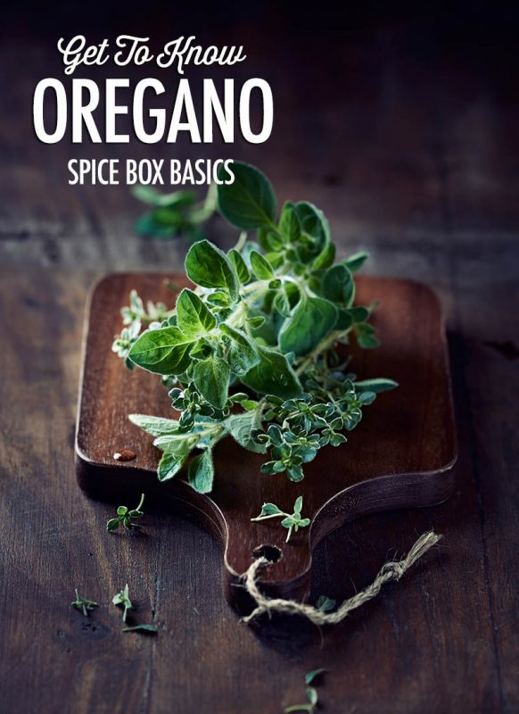 Get To Know Oregano | Food Bloggers of Canada