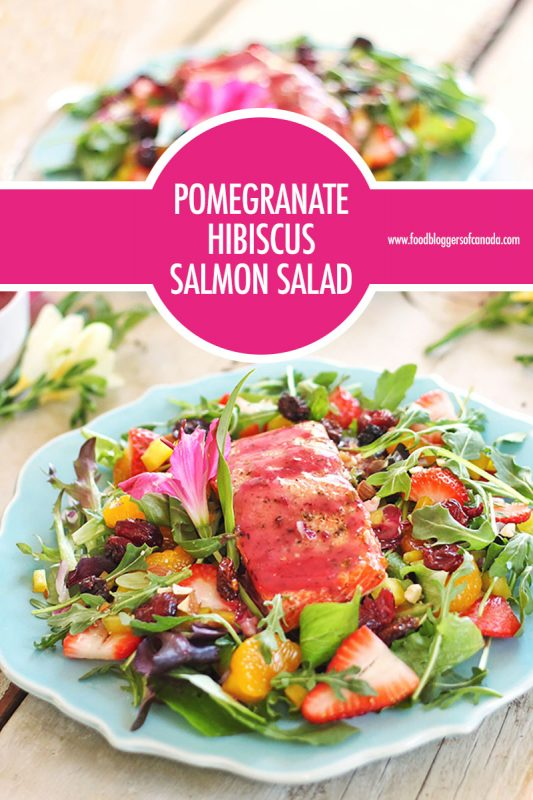 Pomegranate Hibiscus Salmon Salad | Food Bloggers of Canada