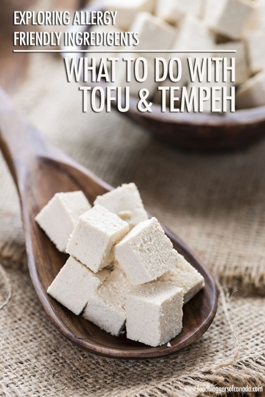 What to do with Tofu and Tempeh | Food Bloggers of Canada