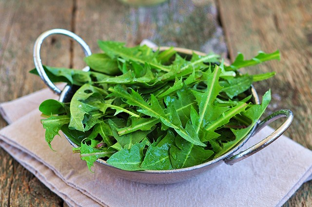 Dandelions: One Curious Ingredient | Food Bloggers of Canada