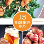 Peach Recipes Collage | Food Bloggers of Canada
