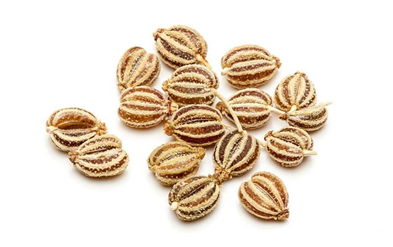 Ajwain or Carom Seeds