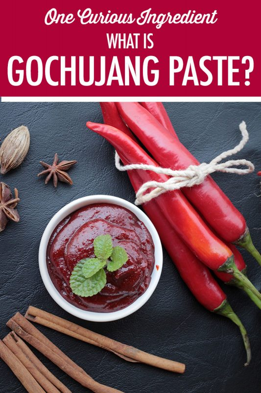 What is Gochujang Paste | Food Bloggers of Canada