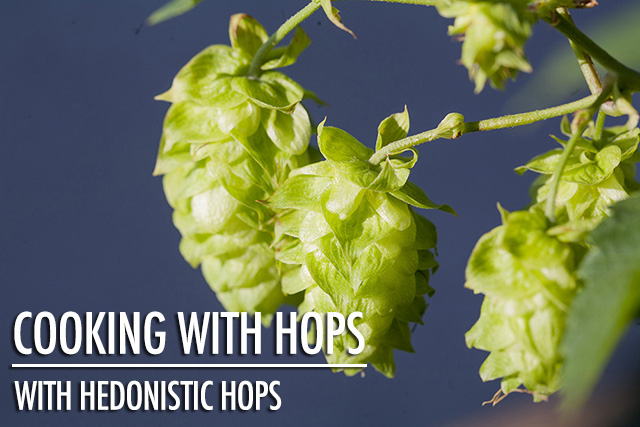 Your Guide to Cooking With Hops | Food Bloggers of Canada