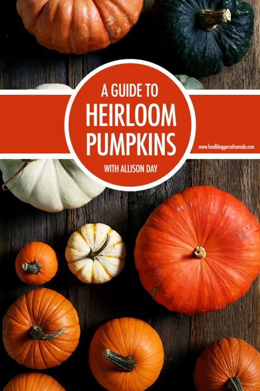 A Guide To Heirloom Pumpkins