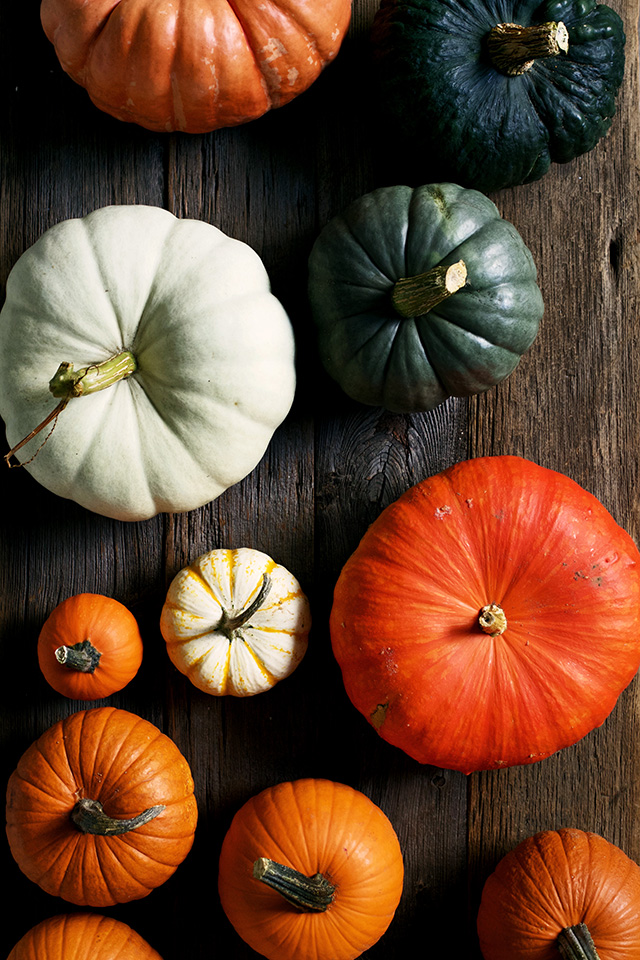 A Guide To Heirloom Pumpkins | Food Bloggers of Canada