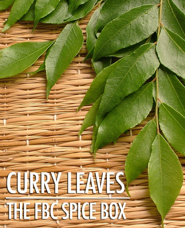 The FBC Spice Box: Getting to Know Curry Leaves | Food Bloggers of Canada