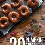 20 Pumpkin Spice Recipes | Food Bloggers of Canada