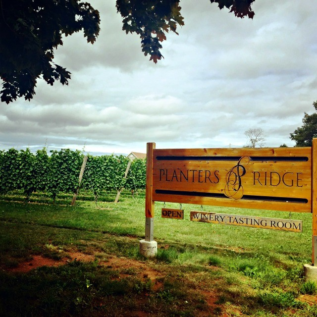 Canadian Wine: Planter's Ridge Winery | Food Bloggers of Canada