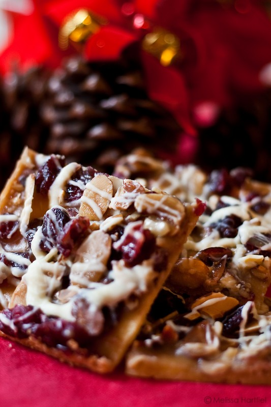 Jingle Bars | Food Bloggers of Canada