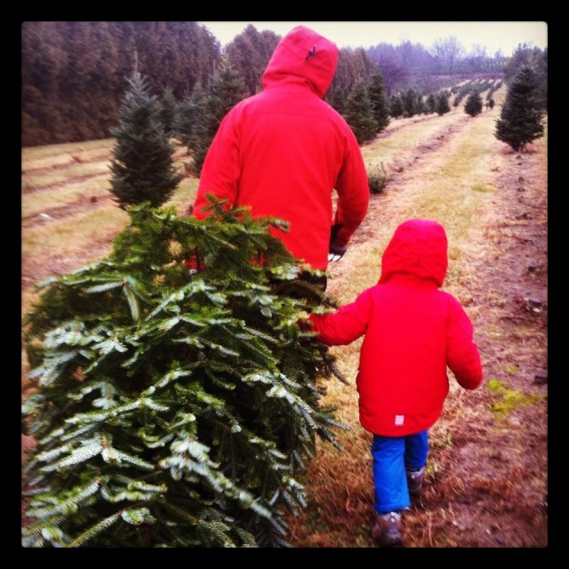 hubby-and-mr-b-christmas-tree-weekend