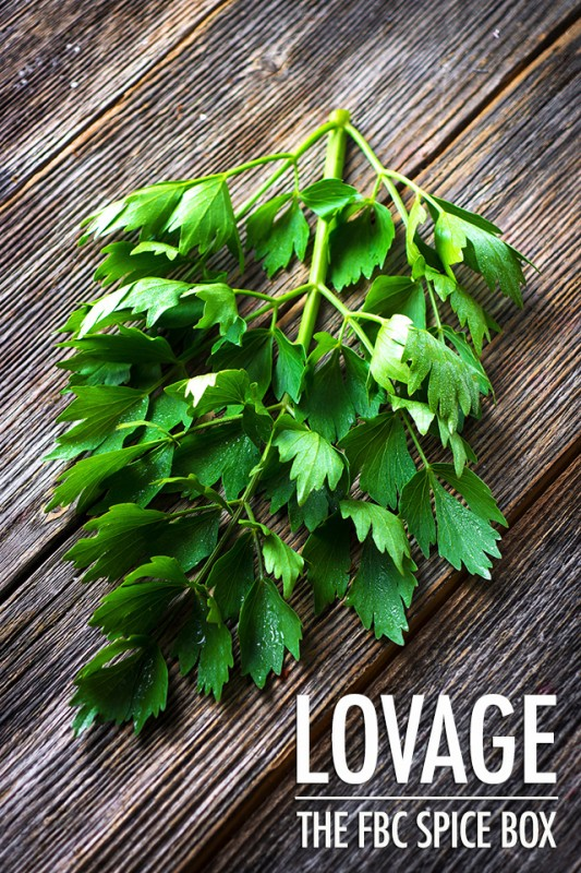 Getting To Know Lovage - The FBC Spice Box | Food Bloggers of Canada