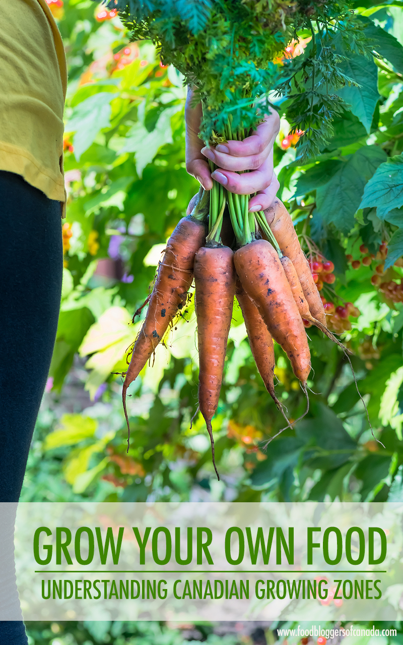 Grow Your Own Food Knowing Your Canadian Gardening Zone Food Bloggers Of Canada