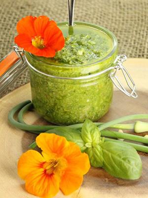 Basil Garlic Scape Pesto | Earth Food and Fire