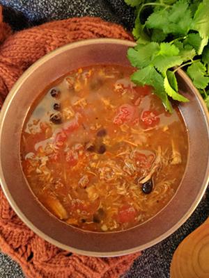 Pork Carnitas Black Bean Soup   Dish 'n' the Kitchen