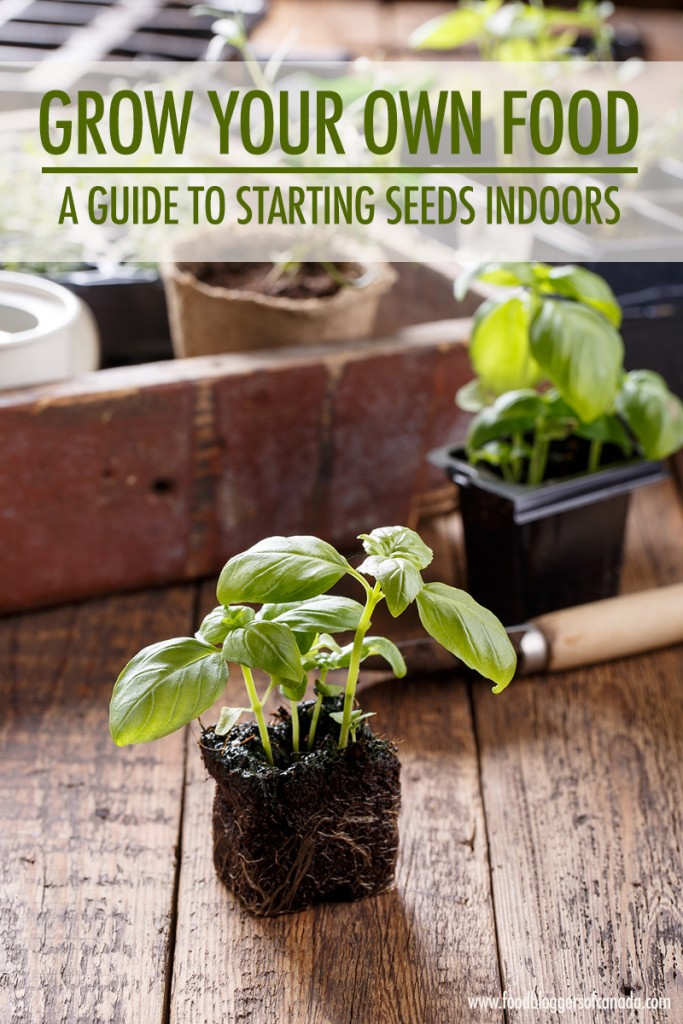 Grow Your Own Food: A Guide To Starting Seeds Indoors | Food Bloggers of Canada