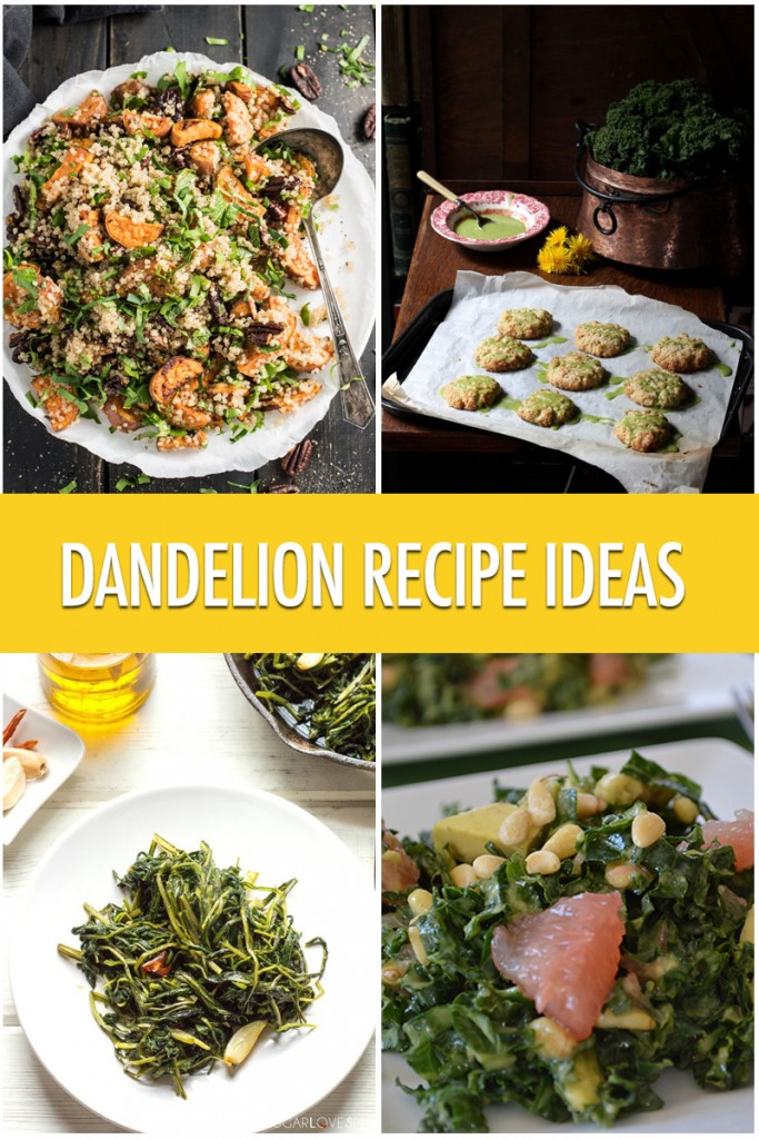 Dandelion Recipe Ideas | Food Bloggers of Canada