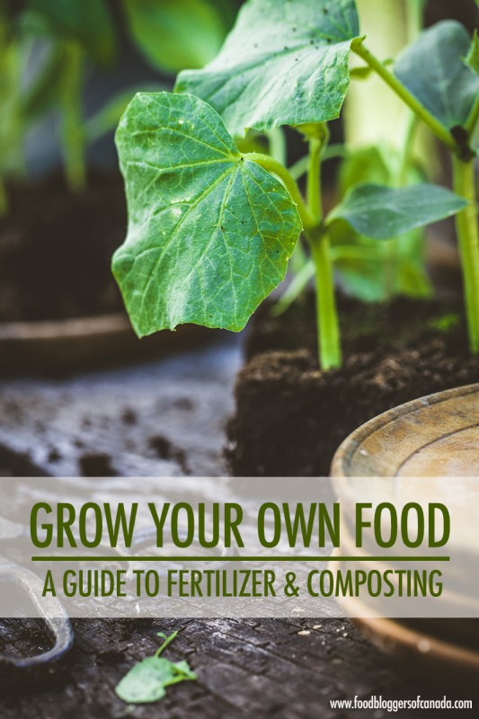 Grow Your Own Food: A Guide to Fertilizer and Composting | Food Bloggers of Canada