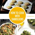 How To Cook With Dandelions | Food Bloggers of Canada