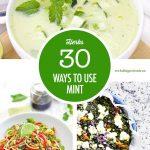 30 Mint Recipes | Food Bloggers of Canada