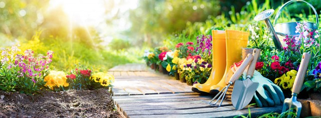 Grow Your Own Food: Summer Garden Chores | Food Bloggers of Canada