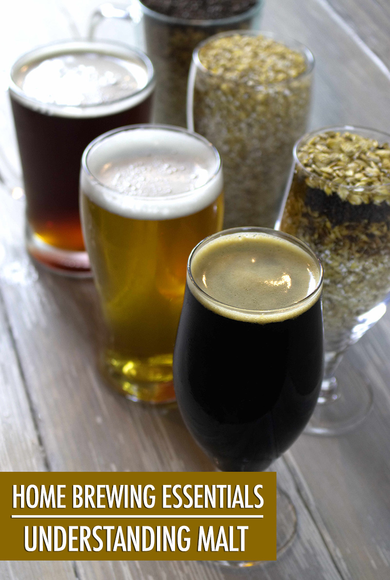 Home Brewing Essentials: Understanding Malt | Food Bloggers of Canada