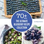 The Ultimate Blueberry Recipe Collection | Food Bloggers of Canada