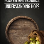 Home Brewing Essentials: Understanding Hops