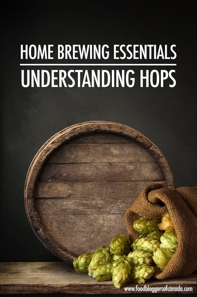 Home Brewing Essentials: Understanding Hops
